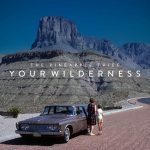 The Pineapple Thief_Your_Wilderness_cover